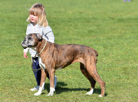 Mia Tindall with boxer dog Spey