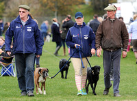 Zara Phillips in blue MUSTO jacket and two males walking with boxer and labrador